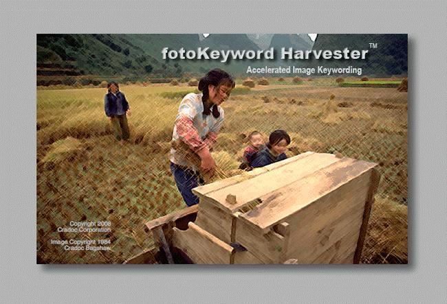 image keywording made easy with Cradoc fotoSoftware's fotoKeyword Harvester - keyword generator
