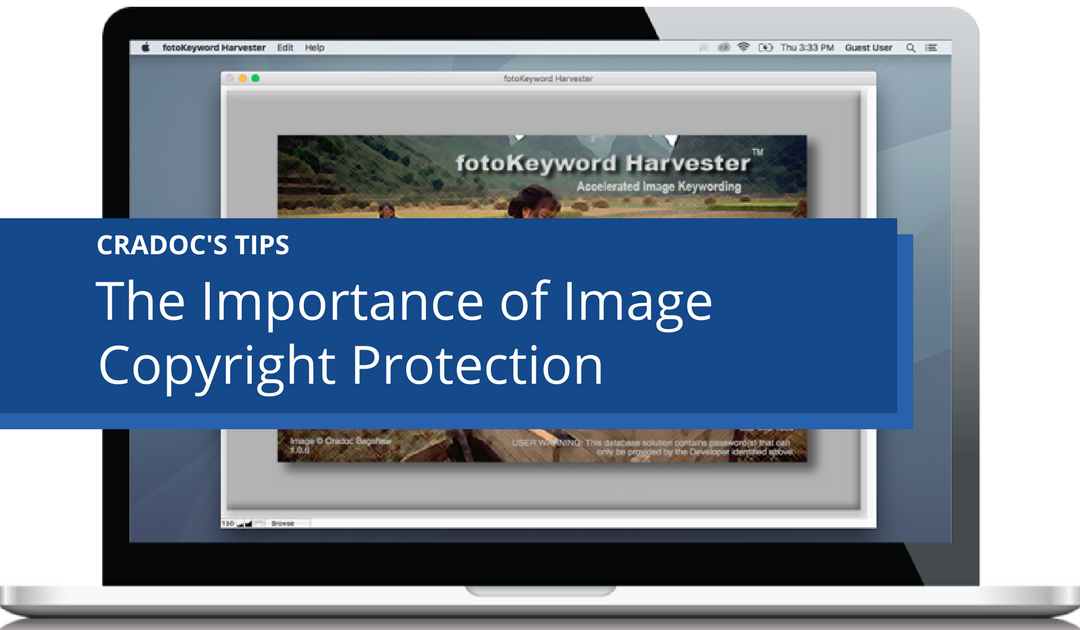 The Importance of Image Copyright Protection